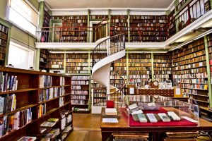 Autumn Content Ideas - Library